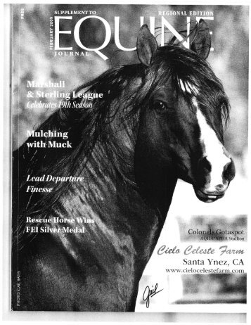 Equine Journal - February, 2009 - Phelps Media Group