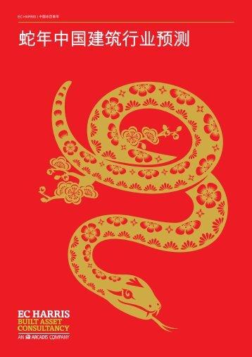 蛇年中国建筑行业预测 - EC Harris