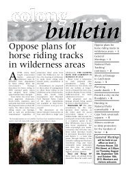 Oppose plans for horse riding tracks in wilderness areas