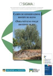 Olivi A5.indd - Parco Regionale dei Colli Euganei