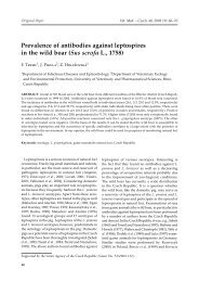 Prevalence of antibodies against leptospires in the wild boar (Sus ...