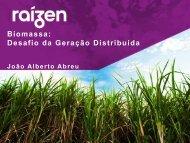 Carve-out Bioenergia - Cogen