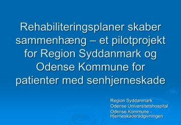Rehabiliteringsplaner skaber sammenhæng – et ... - Socialstyrelsen