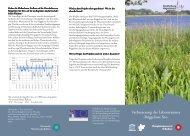 Röggeliner See - im Biosphärenreservat Schaalsee