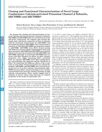 Cloning and Functional Characterization of Novel Large ...