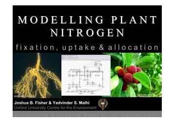 Modelling Plant Nitrogen - JULES