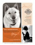 Read more - Sacramento SPCA - Page 6