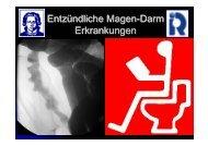 Entzuendliche_Magen_Darm_Vorlesung_WS2007.pdf