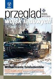 Wzmacnianie fundamentów - Polska Zbrojna