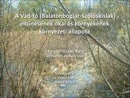 Horváth-Szabó Kata