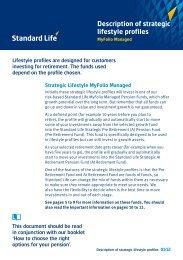 Description of strategic lifestyle profiles - Adviserzone