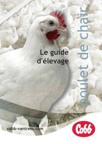 poulet de chair - Cobb