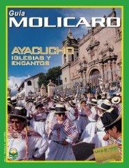 GUIA MOLICAR EDICION 5 ABRIL 2006 - Municipalidad de La Molina