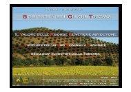 La biodiversità dell'olivo in Toscana. Ruolo delle ... - Archivio Rete Poli