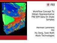 Workflow Concept To Obtain Representative FIB/SEM Data On ...