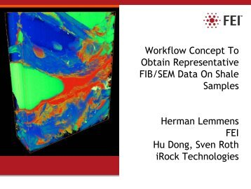 Workflow Concept To Obtain Representative FIB/SEM Data On ...