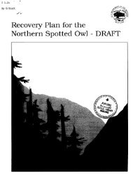 Recovery Plan for the Northern Spotted Owl - DRAFT