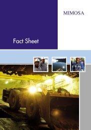 November 2010 (PDF - 628KB) - Impala Platinum