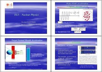 ELI - Nuclear Physics - LEI 2011