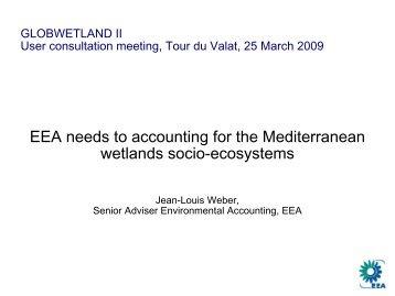 EEA Needs to Ecosystems Accounting - Data User Element - ESA