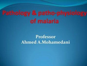 The pathology of malaria