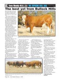WA Supreme Bull Sale Preview - Simmental Australia