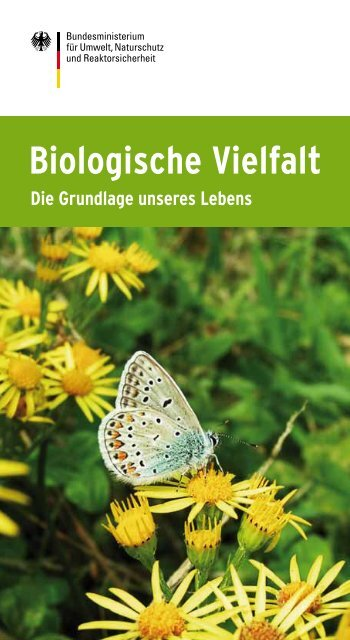 Biologische Vielfalt - Die Grundlage unseres Lebens - Biodiversität ...