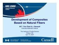 Development of Composites Based on Natural Fibers