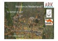 Wolven snel in Nederland? - De Zoogdiervereniging