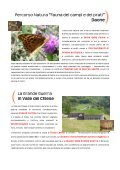 Turismo Scolastico Valle del Chiese - Page 4