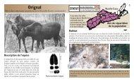 Orignal - Species at Risk