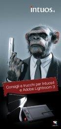 Consigli e trucchi per Intuos4 e Adobe Lightroom 3