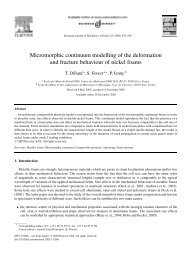 Micromorphic continuum modelling of the deformation and fracture ...