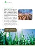 Biotechnologie en planten - VIB - Page 6