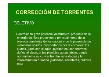 P_Corrección torrentes - Universidad del Cauca