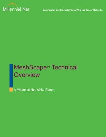 MeshScapeTM Technical Overview - Millennial Net