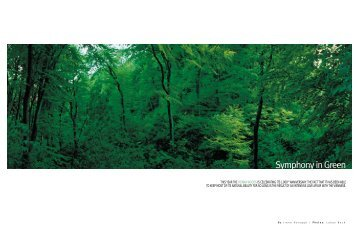 Symphony in Green