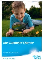 Our Customer Charter (PDF) - Electric Ireland