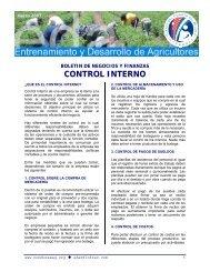 CONTROL INTERNO - Cuenta del Milenio - Honduras