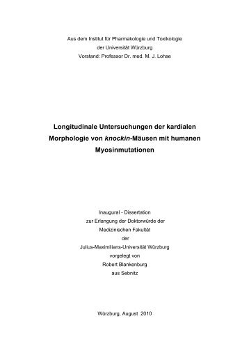 Longitudinale Untersuchungen der kardialen Morphologie von ...