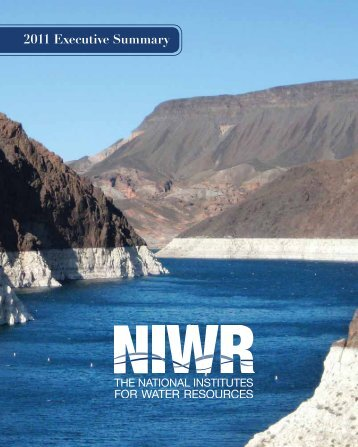 2011 Executive Summary - Water Resources Center - University of ...