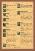 oldal - Page 7