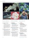 Spektrum der Wissenschaft - Seite 4