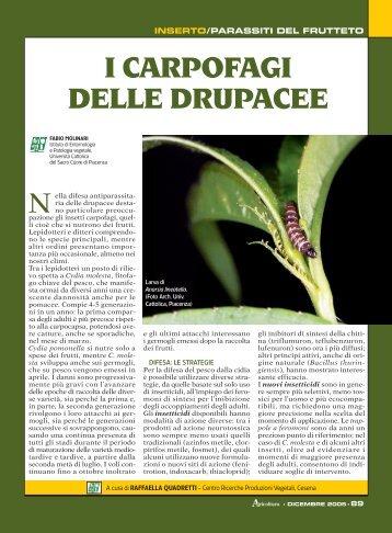 Inserto/Parassiti del frutteto - Fitosanitario.Pc.It