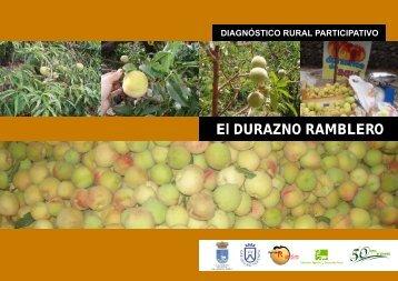 DIAGNÓSTICO RURAL PARTICIPATIVO El ... - AgroCabildo