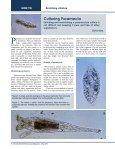 May 2013 - MicrobeHunter.com - Page 4