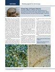 May 2013 - MicrobeHunter.com - Page 6