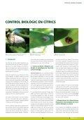 Dossier tècnic núm. 36: Cítrics (II). Control de plagues, en ... - RuralCat - Page 3