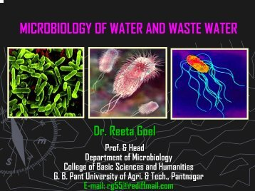 Microbiology of Water and Waste Water