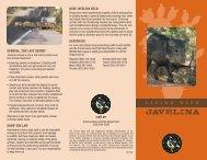 Keep Javelina Wild! - Arizona Game and Fish Department